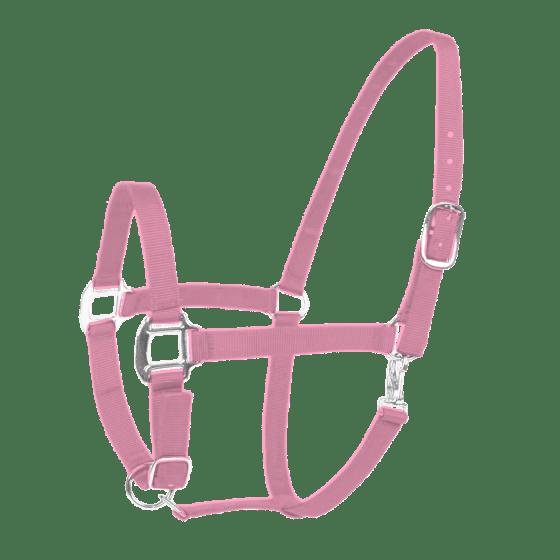 Hofman Cabestro Excelente rosa