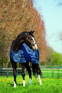Forro de 100 g Pony de Horseware