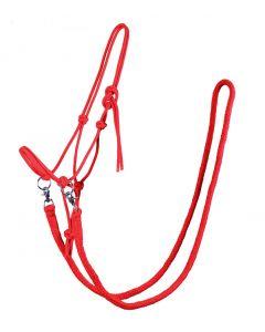 QHP Cabestro de Cuerda con Rein