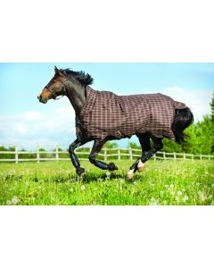 Manta de peso intermedio (200 g) Horseware Rhino Wug Pony