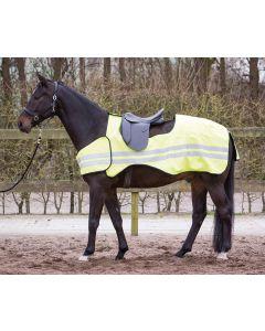 Harry's Horse Hoja de ejercicio reflectante