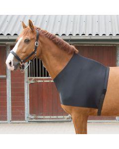 Harry's Horse Protector de pecho lycra