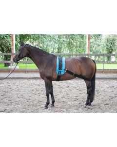 Harry's Horse Cinturón de acometida elástico