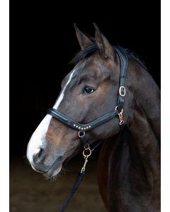 Harry's Horse Cabestro cuero Rosegold anatómico