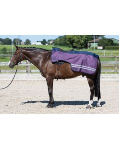 Harry's Horse Sábana de la la manta riñonera 0gr polar