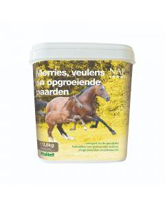 NAF Yeguas, potros y caballos en crecimiento