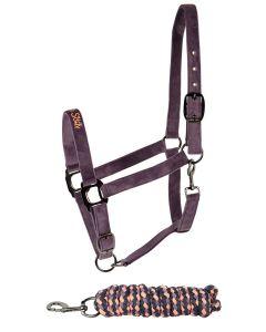 Cabestro Equestrian Society de Harrys Horse