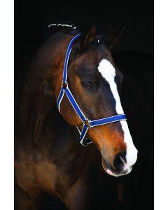 Cabestro Horseware Amigo