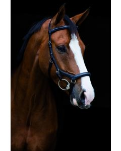 Brida Horseware Rambo Micklem Deluxe Competition